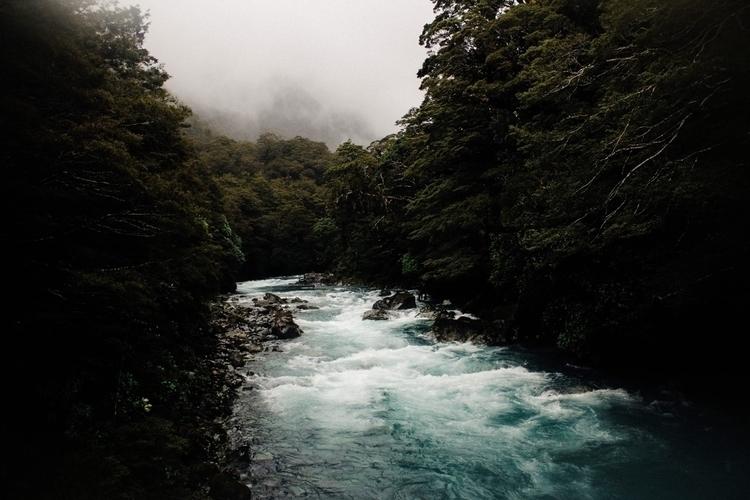 Fiordland National Park, Zealan - brennalynn | ello