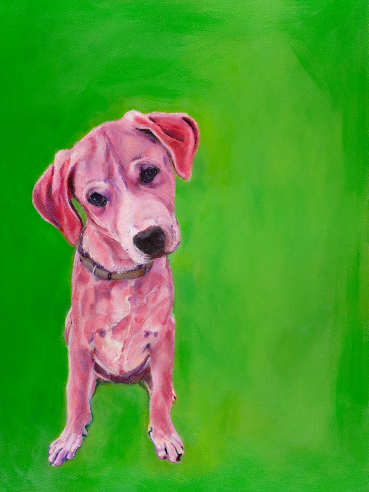 Daisy - dogart, petportrait, labrador - lesleeortegaart | ello