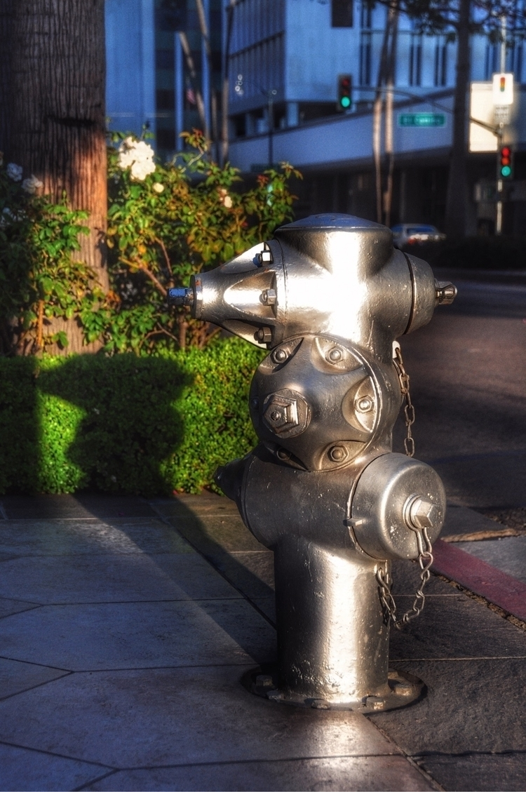 "Hydrants: USA, ""Silver Surfer - madap 