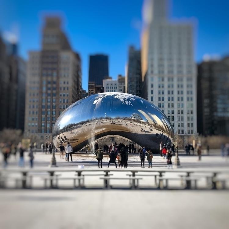 Bean - wu_chicago, artofchi, chicagogrammers - scottterry | ello