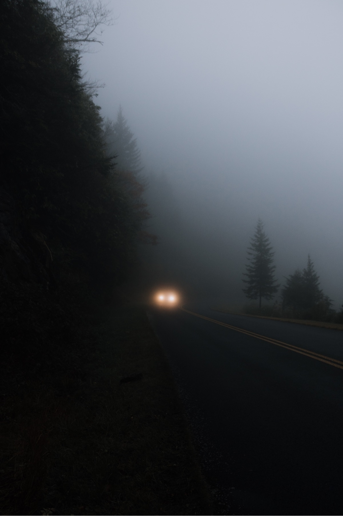 Foggy drives parkway Submitted  - wandernwill | ello