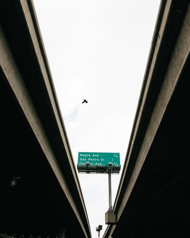 minimal, street, streetphotography - eatenbyflowers | ello