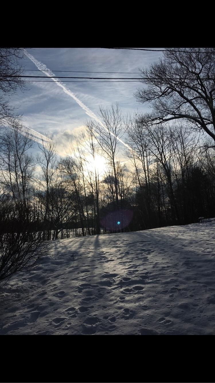 photographer56 Post 14 Feb 2018 20:54:50 UTC   ello