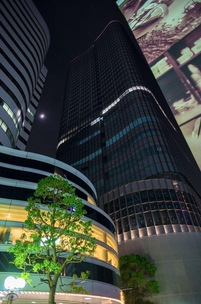Dwarfed Concrete. Tokyo, 2017,  - pentaxke | ello