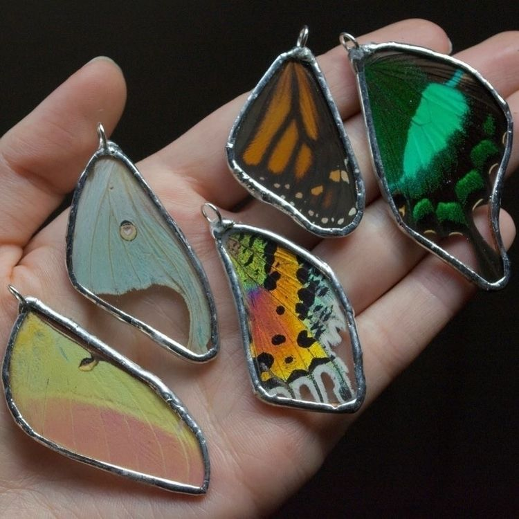 jewelry shop . 33 insect wing n - thebutterflybabe | ello