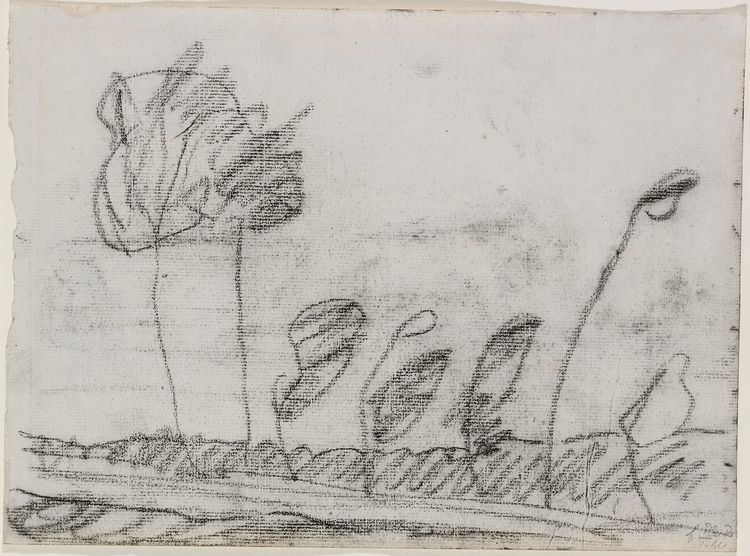 Trees Paula Modersohn-Becker Me - modernism_is_crap | ello