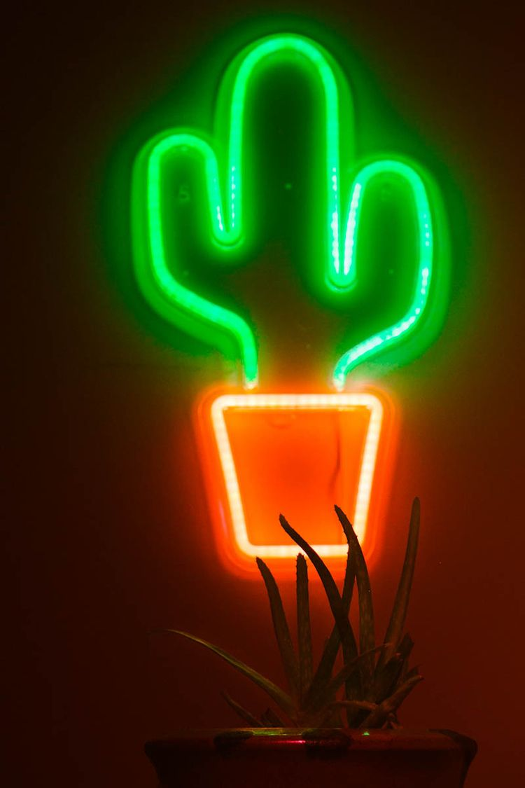 neon, photography, lifestyle - hwoolardphotos | ello