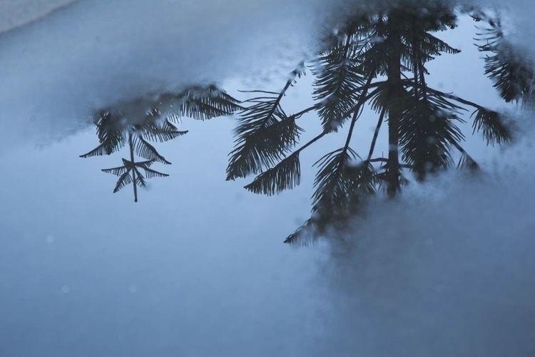 reflection, reflections, blue - jokalinowski_ | ello