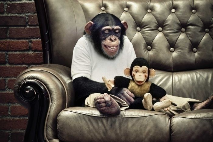 Manic Monkey Mind therapist sug - ccruzme | ello