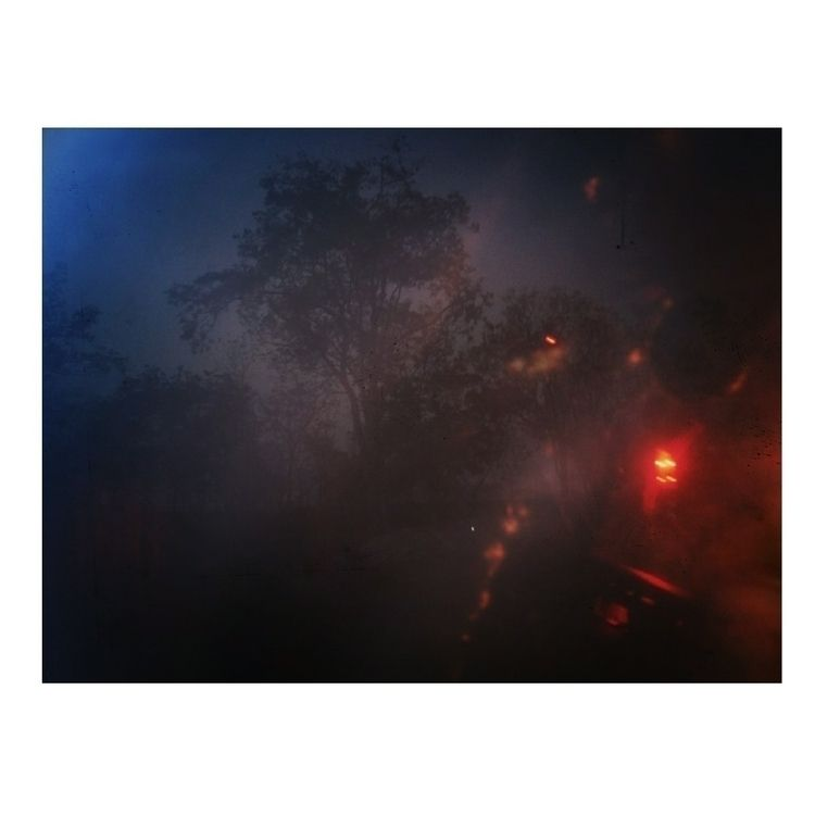 Assam, India 2018 - night, light - roygourav | ello