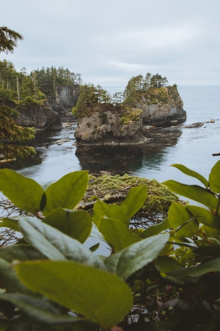 Cape Flattery, Washington - riileybrennan | ello