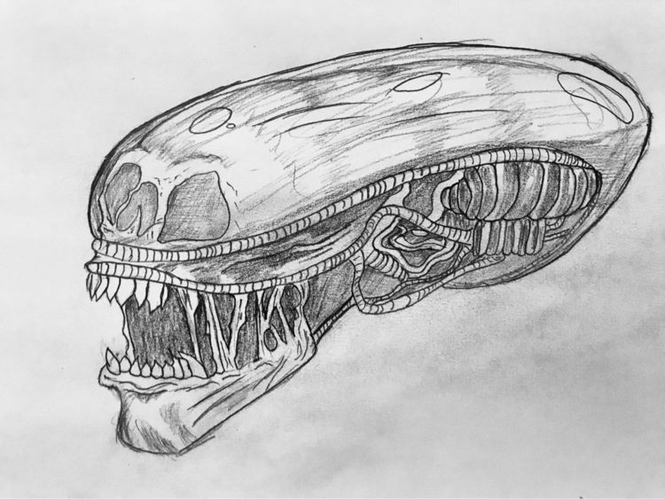 sketch, Alien, illustration, hrgiger - sergio_bravo_jr | ello