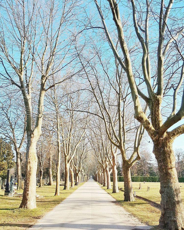 infinite avenue - teufelchristoph | ello