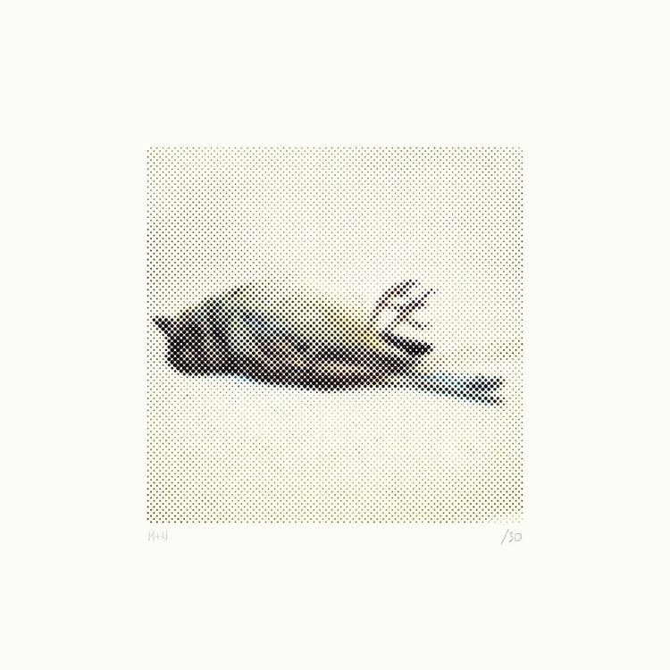 birds stone. frame - screenprint - mick_wout | ello