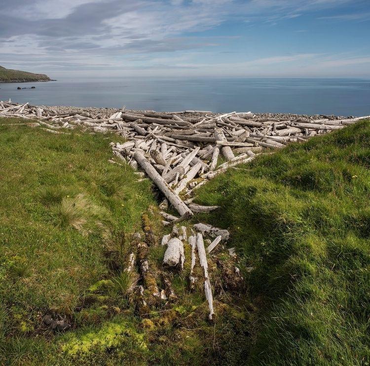 Driftwood littered shoreline St - forgottenheritage | ello