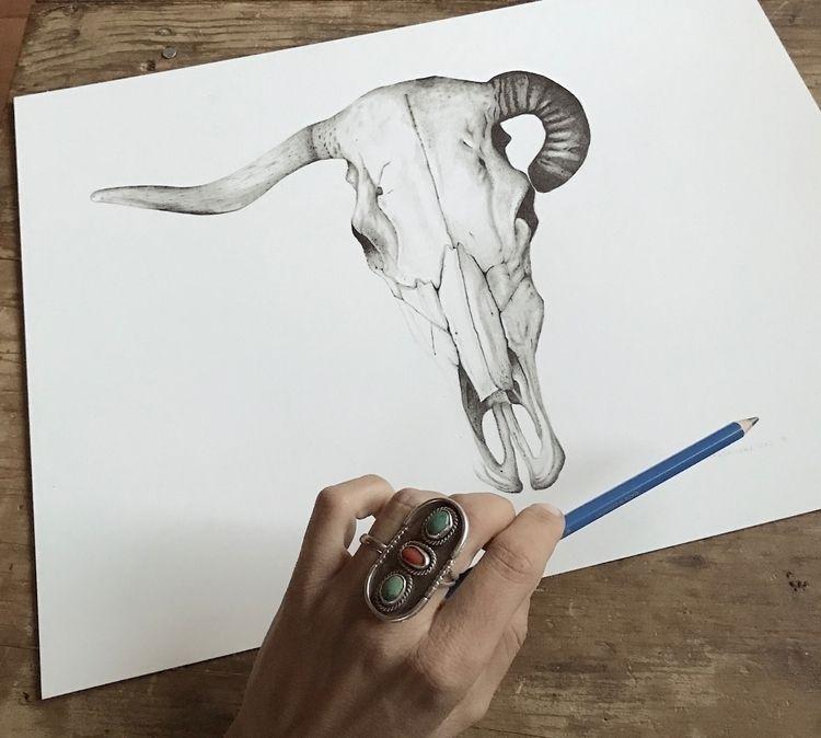 Skull 1 | 12x16 graphite 2018 - illustration - magdalenasoko | ello