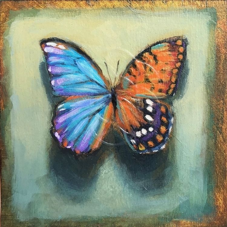 2 hermaphrodite butterflies 5x5 - stacydaguiar | ello