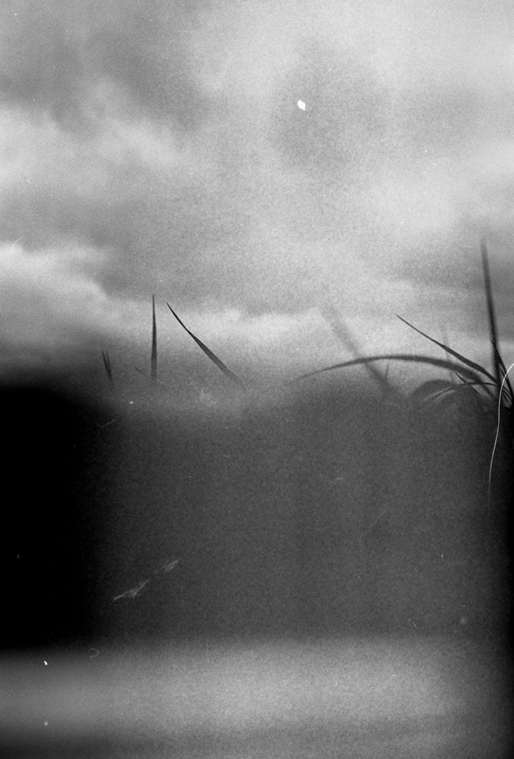 35mm, film, analog, photography - mikelohr | ello