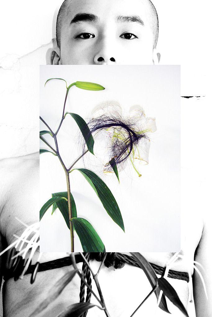 photograph, photography, lily - linsshit | ello