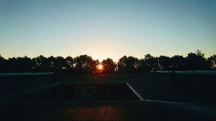 sunrise, sun - themoonlitroad | ello