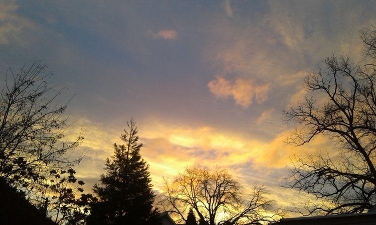 Morning sunrise plays silhouett - carleigh_m | ello