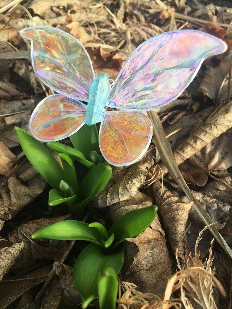 plant Hooray happy surprises si - faerieblessings | ello
