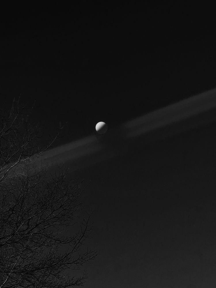 moon - Perspective, NYTE - phobetor | ello