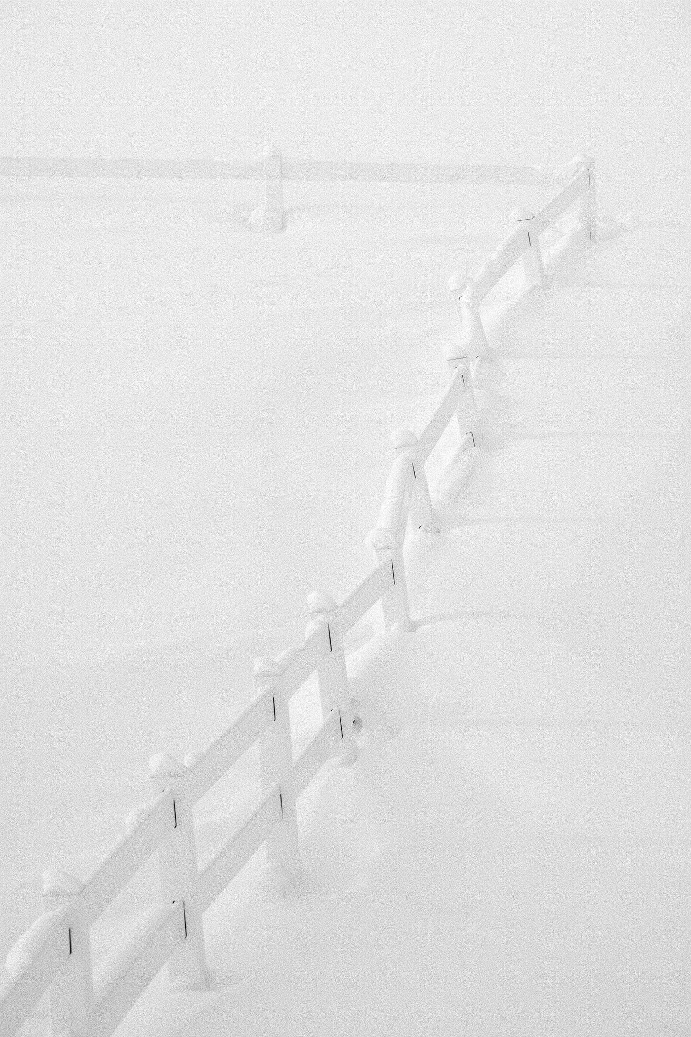 Biei Hokkaido - fujifilm, fujixcamera - tedhamilton | ello