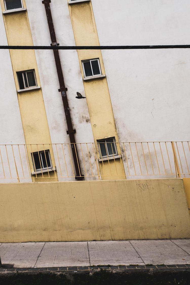 Valparaiso, 2017 - marcelo-soto | ello