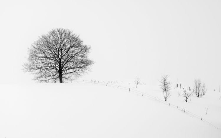 Biei Hokkaido - fujifilm, monochrome - tedhamilton | ello