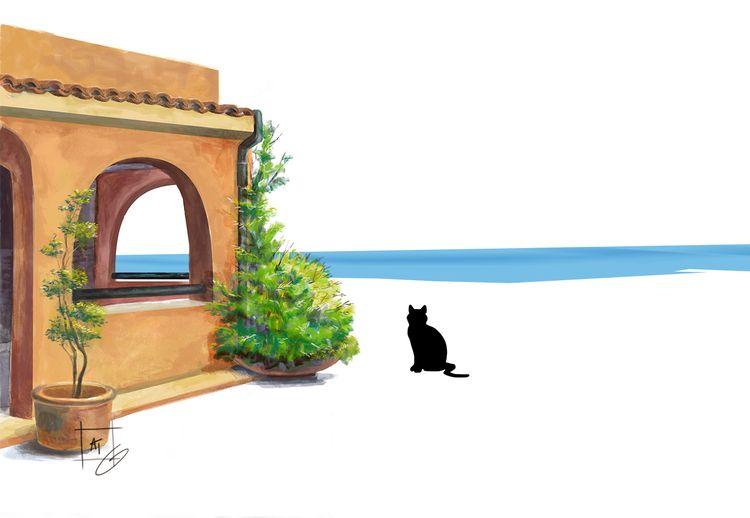 Home sweet home: cat feel home  - alessandraimperio   ello