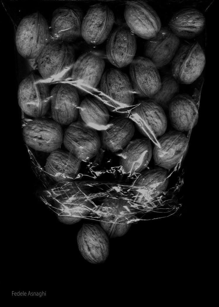 Walnuts - walnuts, scannography - fidel | ello