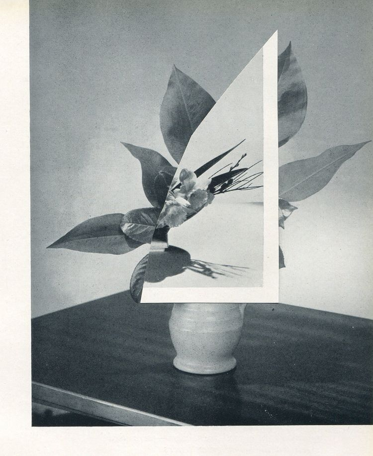Flower Arrangement nr. 2 - vesnavrdoljak | ello
