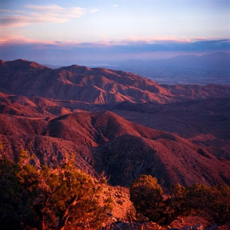 View, Joshua Tree, CA. Yashica  - danielregner | ello