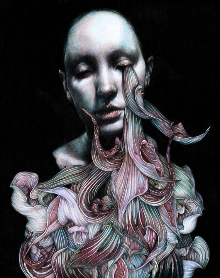 Coloured pencil illustrations M - inag | ello