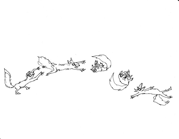 foxes, sketch - tomatoaftermath | ello