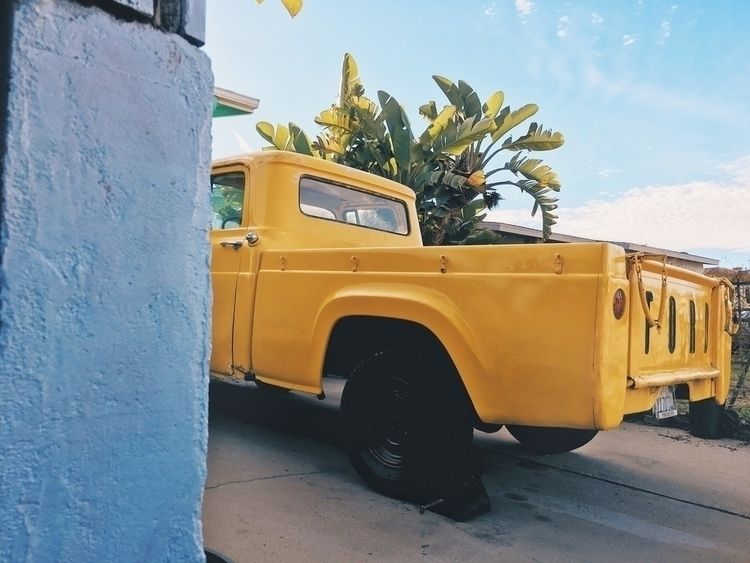 ford, truck, motors, yellow, calfornia - tramod | ello