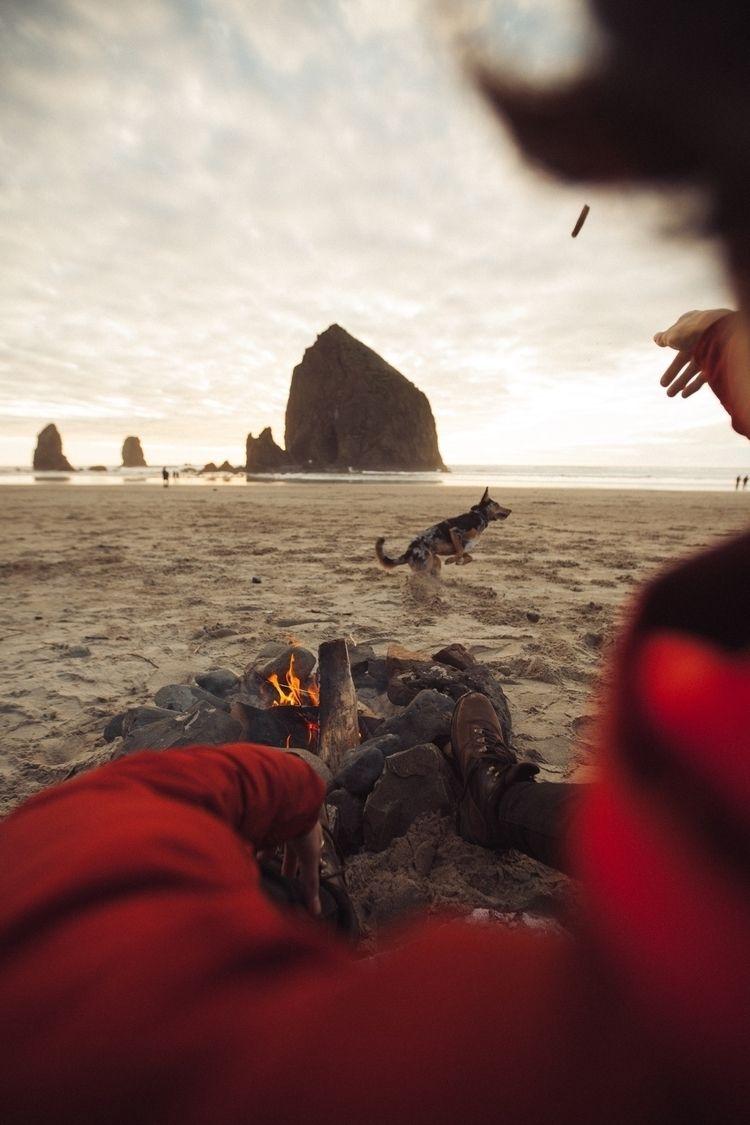 campfire, dog, beach, canon, landscape - zackburas | ello