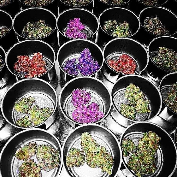personalized Medical Marijuana  - marcelinajosesebastian | ello