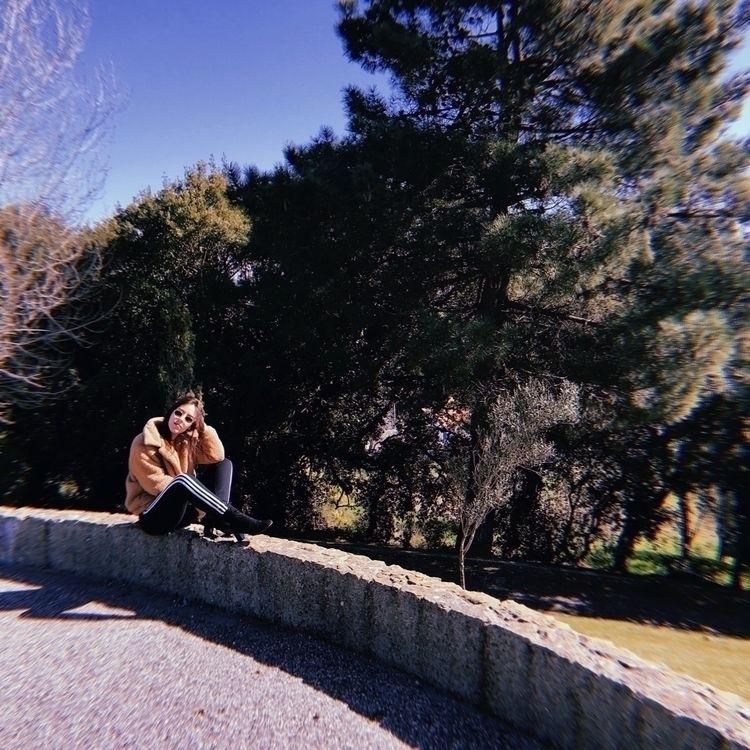 photography, film, daylight, portugal - joanacomeapapa   ello