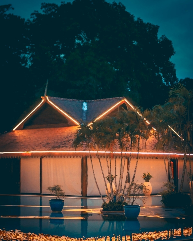 dinner drinks pool, chill...  - notjapan - fokality   ello