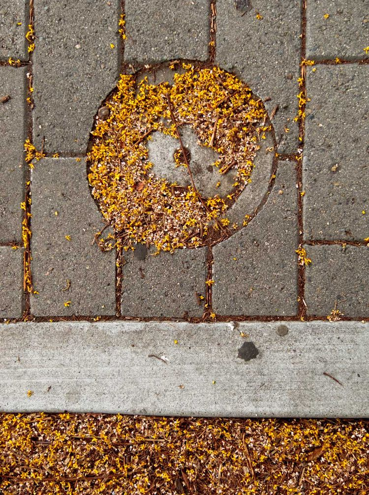 abstractart, abstractphotography - undertheconcretesky | ello