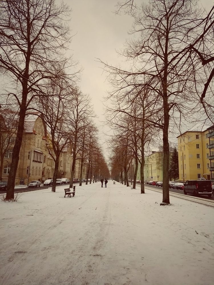 snow, alley, winter, lastdaysofwinter - claudio_g_c | ello