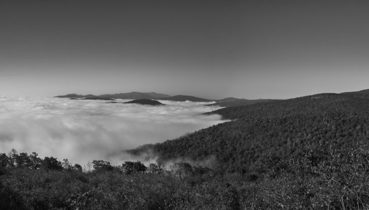 early morning fog Shenandoah Na - aaronvizzini | ello