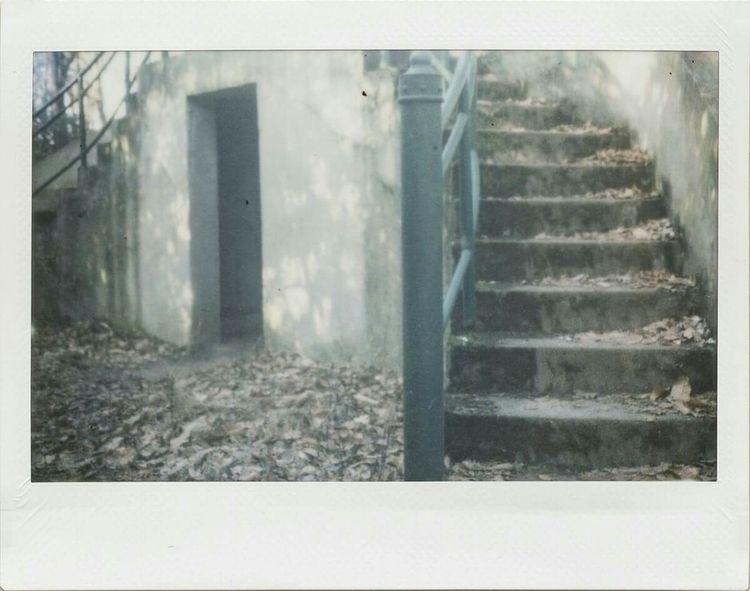 untitled polaroid 250 + instax  - karin-claus | ello