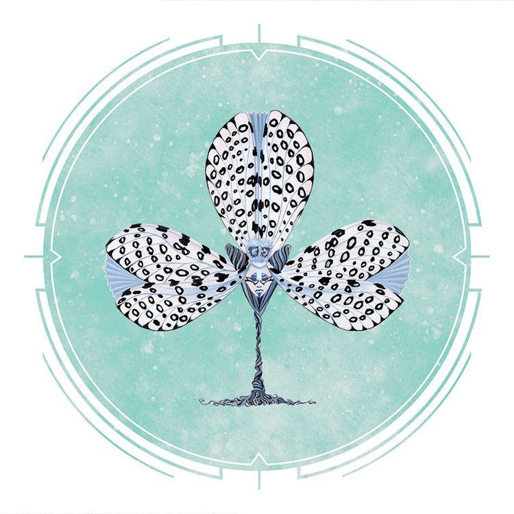 POKER HEADS Leopard Moth series - mosswater | ello