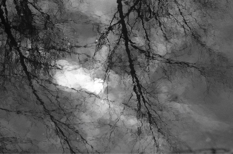 reflecting (analoging - flaneurity | ello