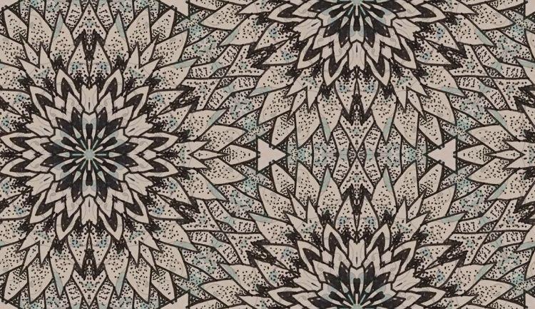 'Dandelion' 'Pins Needles' Phot - lottienorton | ello