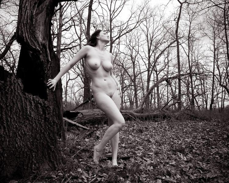 nsfw, nude, art, tits, legs, woods - heycalvin   ello