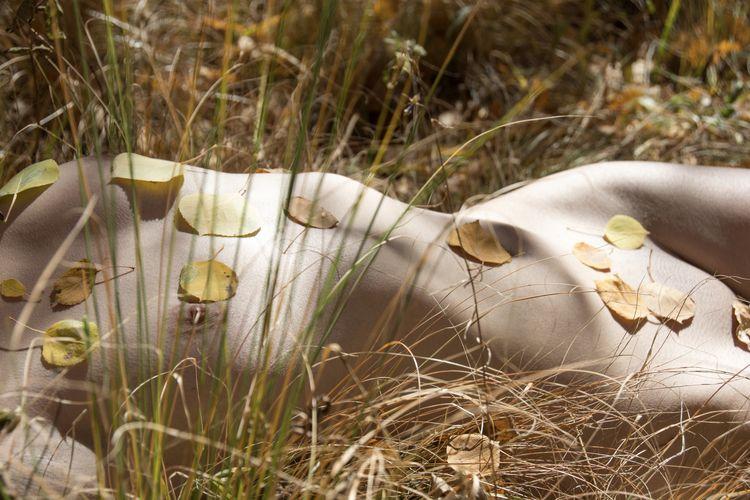 simply nude nature cheers, Gunn - gunnarnettleshipphotography | ello